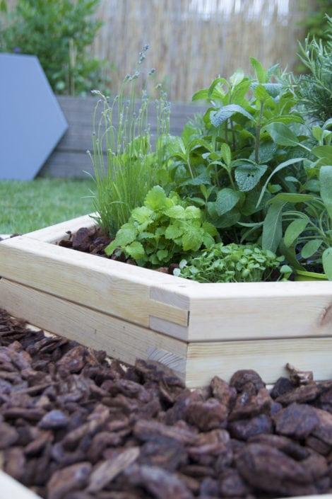 pěstování bylinek, zahradní květináče, pěstování na zahradě, zahradničení, jednoduché zahradničení, designové zahradničení