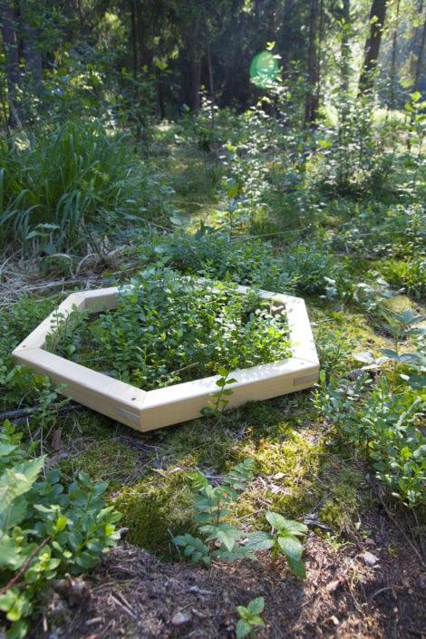 ulli, zahradničení, venkovní design, venkovní dekorace, přírodní dekorace, příroda