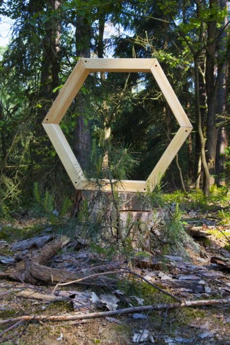 les, lesní království, pařez, designová zahrada, stylová zahrada
